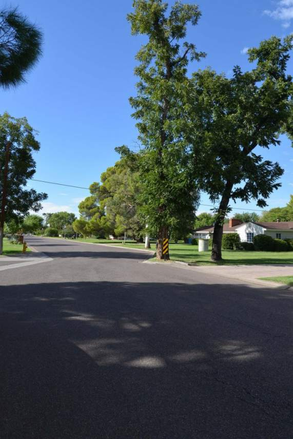 Rancho-Solano-684x1024